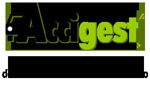 logo-accigest-footer